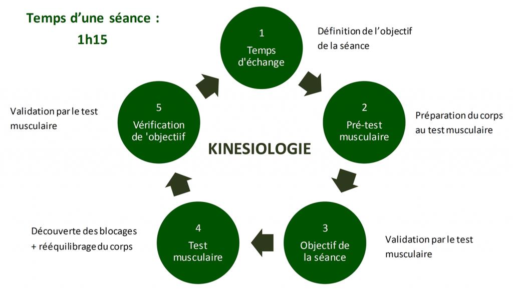 Kinesiologie-à-Annecy